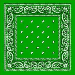 [ Un nuevo comienzo ; GR0V Ganton Familie'Z ] Bandana-verde-prato
