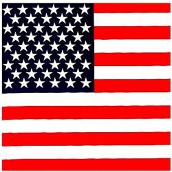 bandana USA