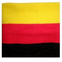 polsino bandiera germania