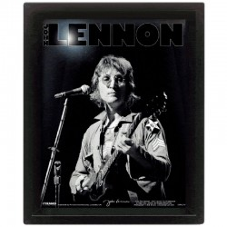 Cornice in 3D John Lennon Live Bob Gruen